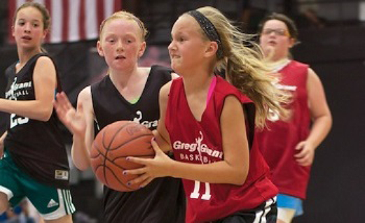 Basketball leagues in Michigan